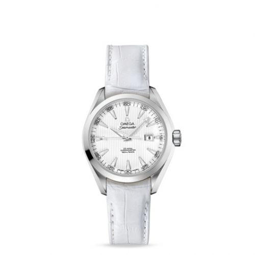 231.13.34.20.04.001 : Omega Seamaster Aqua Terra 150M Co-Axial 34 Stainless Steel / Silver